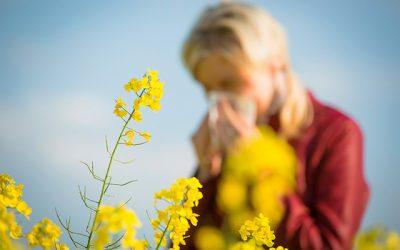 花粉でダウンだけども!…。
