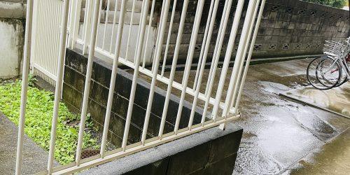 雨で地面が濡れていて白い柵の奥に緑の雑草が生えている